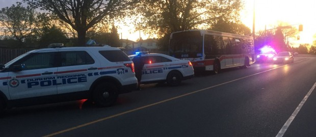 Man Arrested After Stolen TTC Bus Found In Whitby