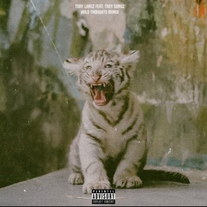 Tory Lanez Ft Trey Songz- Wild Thoughts Remix