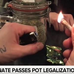 Pot Legalization Bill Passes In The Senate