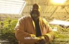 aMercenaryFilm Presents- Lord Fury